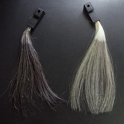 白髪に同じ色を入れても