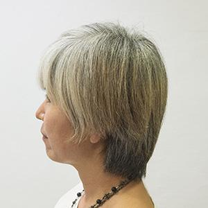 白髪ぼかしビフォア1
