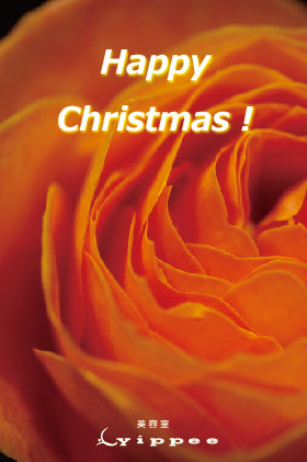 yippeeクリスマスDM