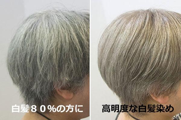 白髪80%のおしゃれグレイヘアーカラー