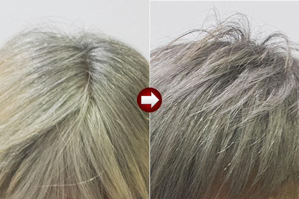 グレーヘアー50代女性白髪モノトーングレイに染める画像