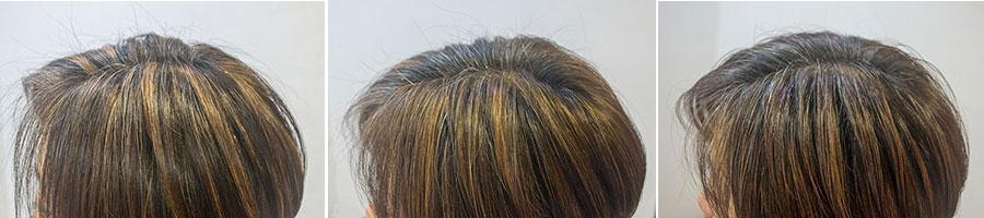 白髪のハイライトによるカラーの変化
