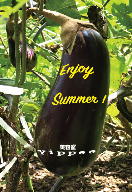 美容室yippee2019年の夏休み