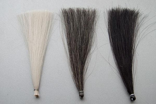 白髪100%と30%と黒髪