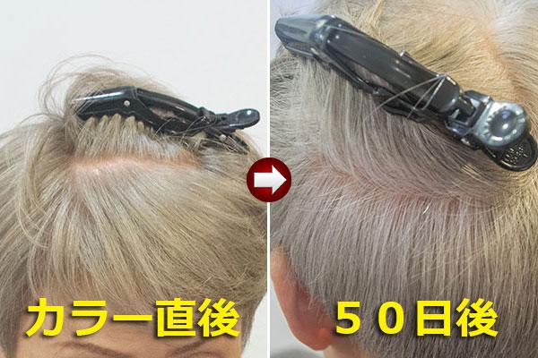 白毛を淡く染めたグレイヘア