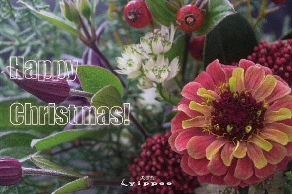 yippeeクリスマスカード